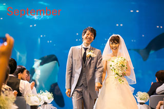 夢みてた名古屋港水族館結婚式!